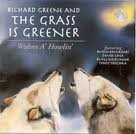 richard greene,la storia del rock,discografia di richard greene,recensioni musicali di richard greene,musica di richard greene,video clip di richard greene,rockmania,immagini di richard greene,